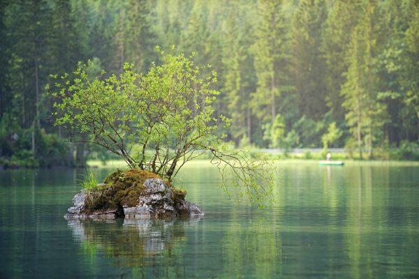 Nad płynącą wodą
